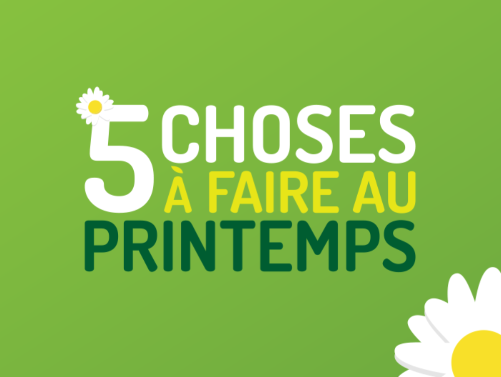 Cinq choses à faire au printemps
