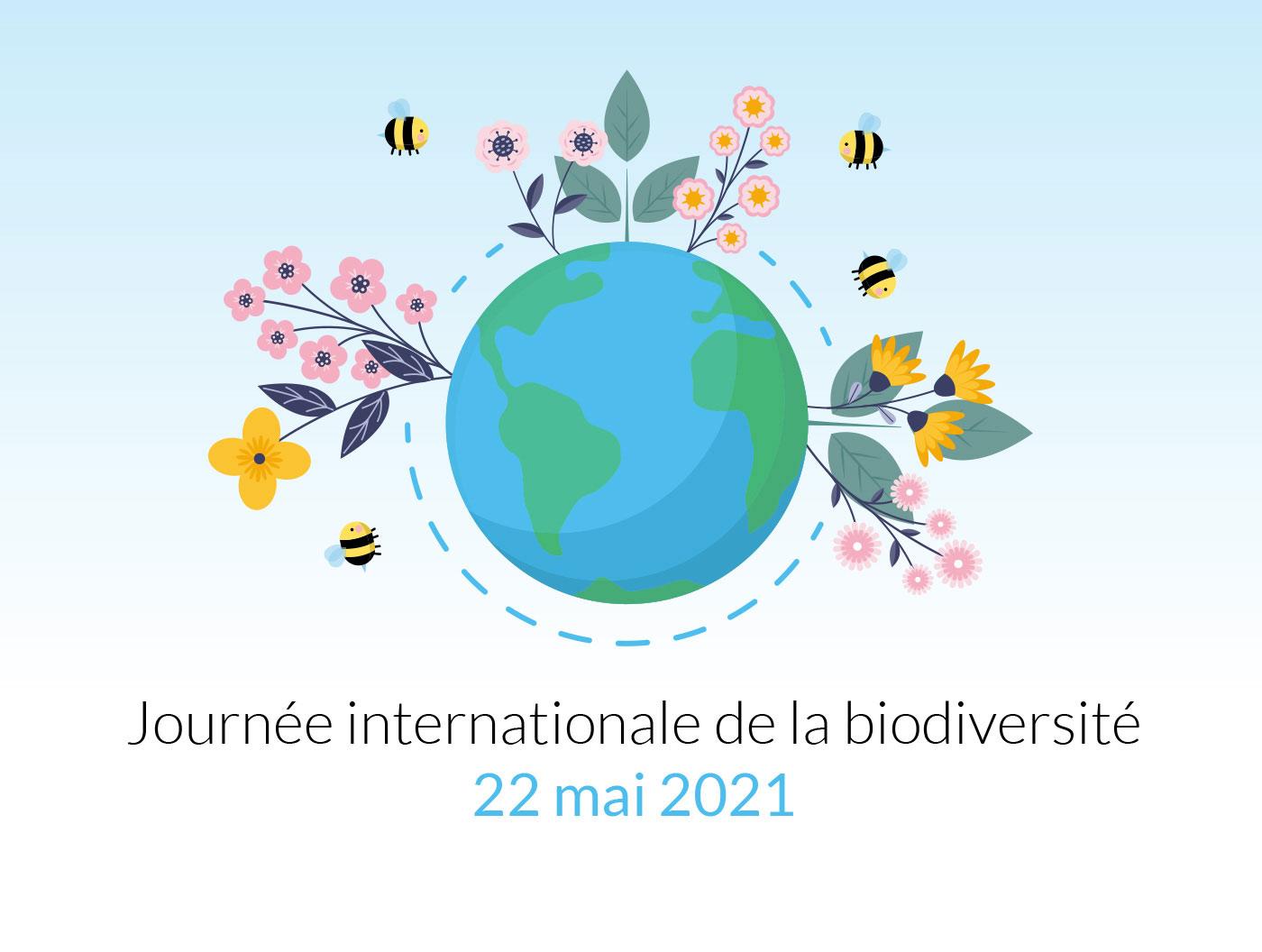 Samedi, c'est la journée internationale de la biodiversité !