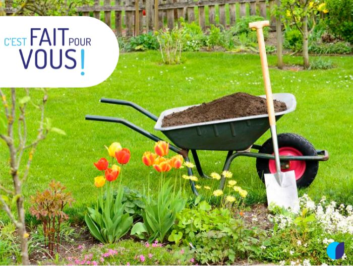 👨🌾 Calendrier du jardinier: Le mois d'Août
