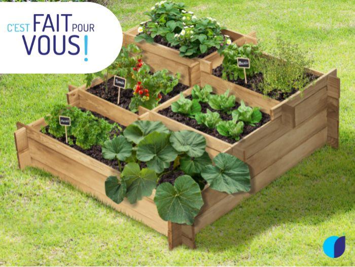👨🌾 Calendrier du jardinier : Le mois de Septembre 🍂